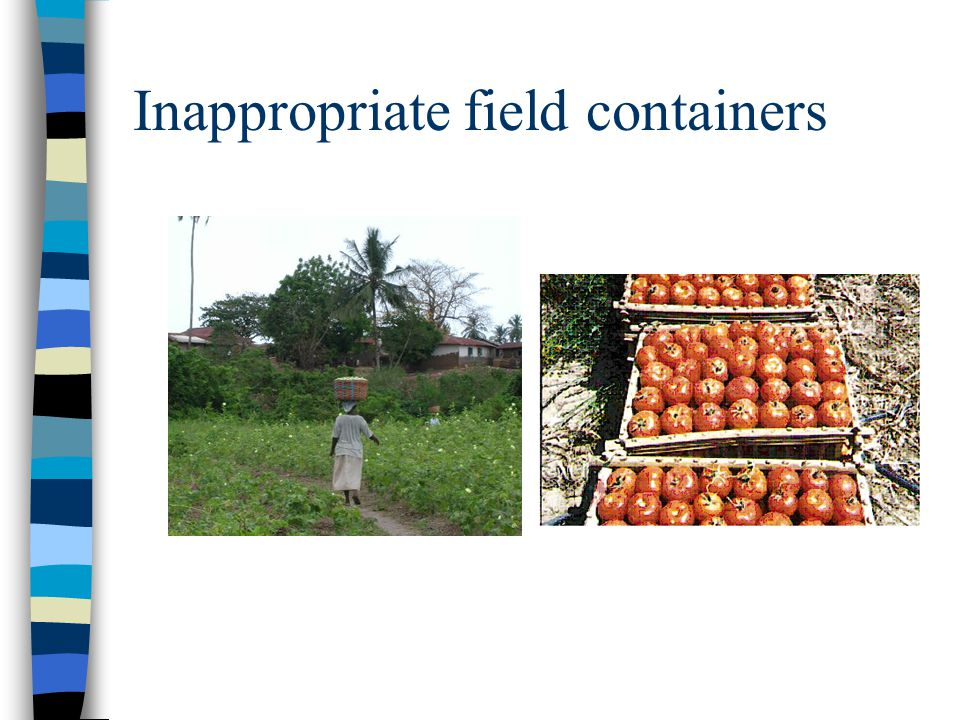Inappropriate field containers