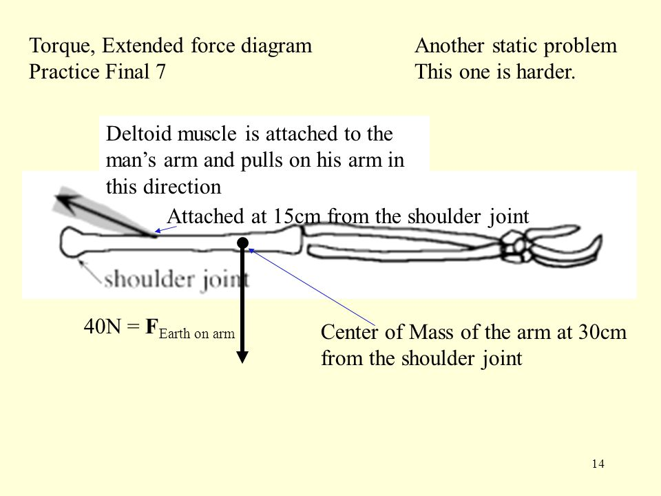 14 Torque, Extended force diagram Practice Final 7 Deltoid muscle is attached to the man's arm and pulls on his arm in this direction Attached at 15cm from the shoulder joint Center of Mass of the arm at 30cm from the shoulder joint 40N = F Earth on arm Another static problem This one is harder.