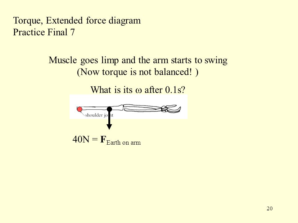 20 Torque, Extended force diagram Practice Final 7 40N = F Earth on arm Muscle goes limp and the arm starts to swing (Now torque is not balanced.
