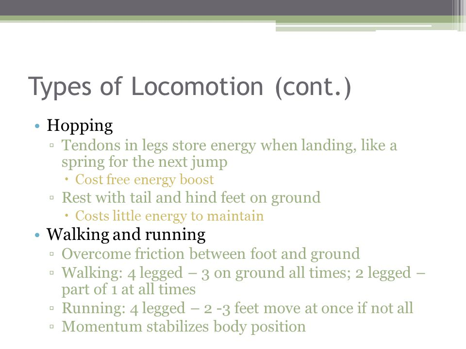 Types of Locomotion (cont.) Hopping ▫Tendons in legs store energy when landing, like a spring for the next jump  Cost free energy boost ▫Rest with tail and hind feet on ground  Costs little energy to maintain Walking and running ▫Overcome friction between foot and ground ▫Walking: 4 legged – 3 on ground all times; 2 legged – part of 1 at all times ▫Running: 4 legged – 2 -3 feet move at once if not all ▫Momentum stabilizes body position