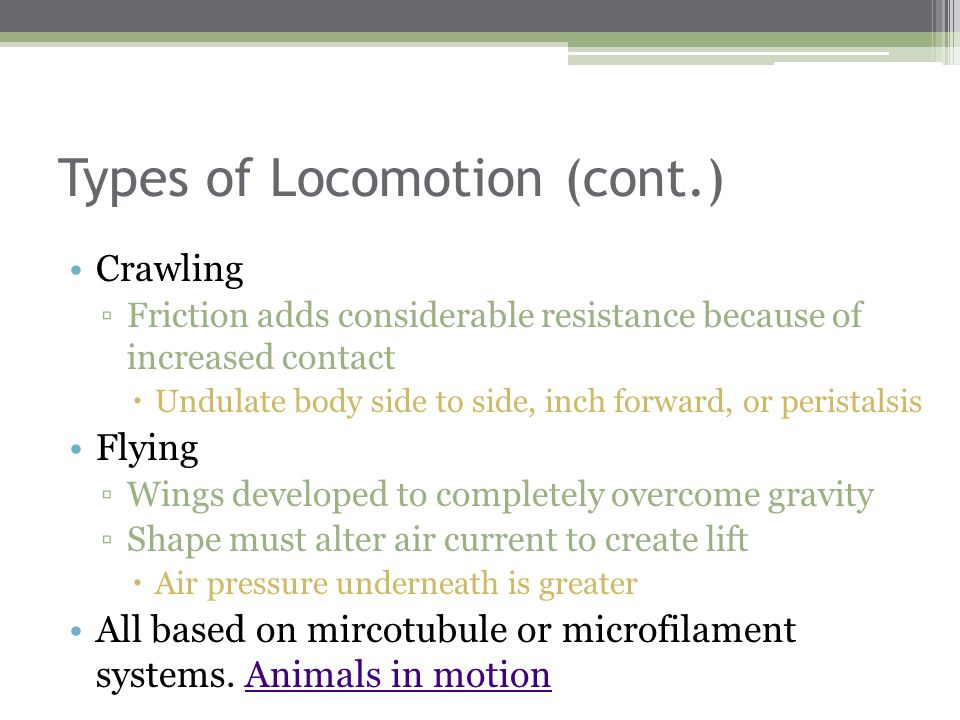 Types of Locomotion (cont.) Crawling ▫Friction adds considerable resistance because of increased contact  Undulate body side to side, inch forward, or peristalsis Flying ▫Wings developed to completely overcome gravity ▫Shape must alter air current to create lift  Air pressure underneath is greater All based on mircotubule or microfilament systems.