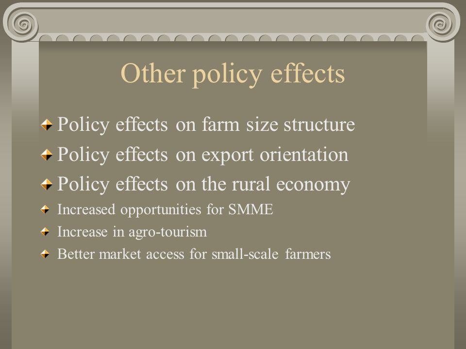 Other policy effects Policy effects on farm size structure Policy effects on export orientation Policy effects on the rural economy Increased opportunities for SMME Increase in agro-tourism Better market access for small-scale farmers