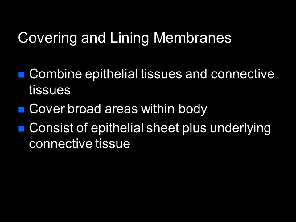 Types of Membranes Cutaneous membrane – skin Mucous membrane  Lines hollow organs that open to surface of body  An epithelial sheet underlain with layer of lamina propria Serous membrane – slippery membranes  Simple squamous epithelium lying on areolar connective tissue  Line closed cavities Pleural, peritoneal, and pericardial cavities Synovial membranes – lining joint cavities  Loose connective (areolar) + simple squamous epithelium  Secretes fluid (synovial fluid) which lubricates, protects & cushions joint structures