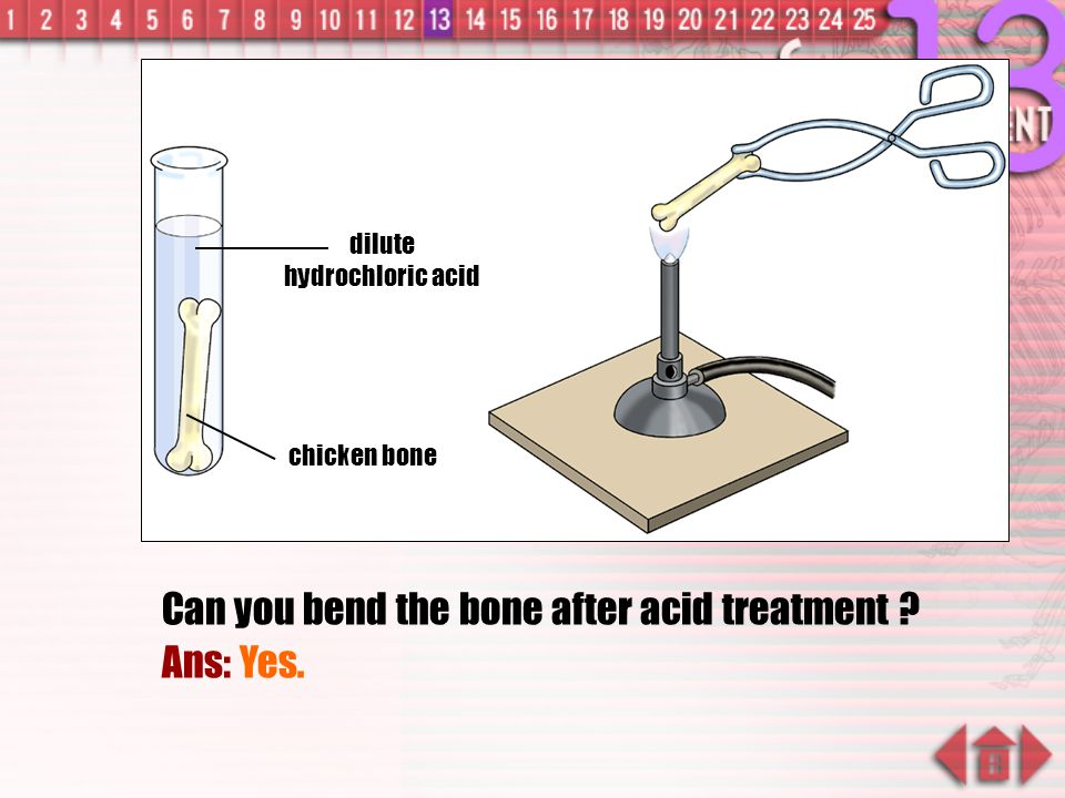 To find out How the Chemical Components of Bone Affects its Properties