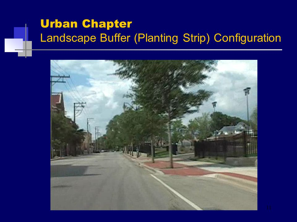 Urban Chapter Landscape Buffer (Planting Strip) Configuration 11