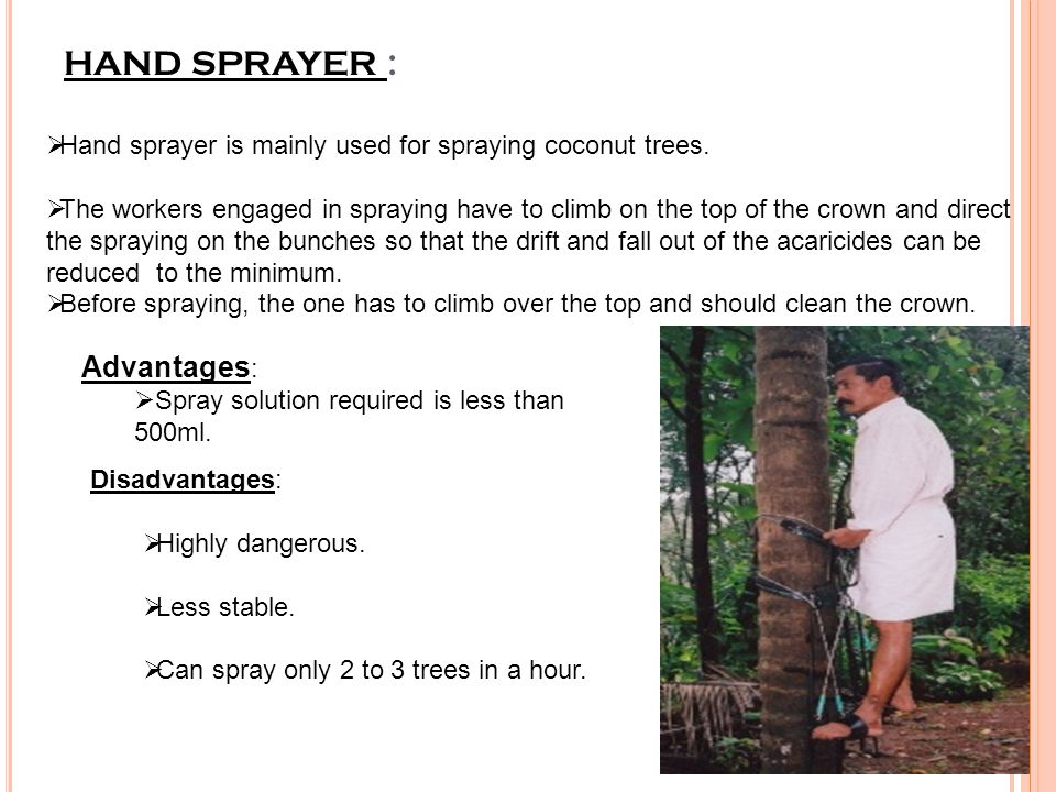 HAND SPRAYER :  Hand sprayer is mainly used for spraying coconut trees.  The workers engaged in spraying have to climb on the top of the crown and d
