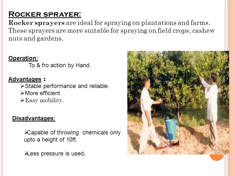 Rocker sprayer: Rocker sprayers are ideal for spraying on plantations and farms. These sprayers are more suitable for spraying on field crops, cashew