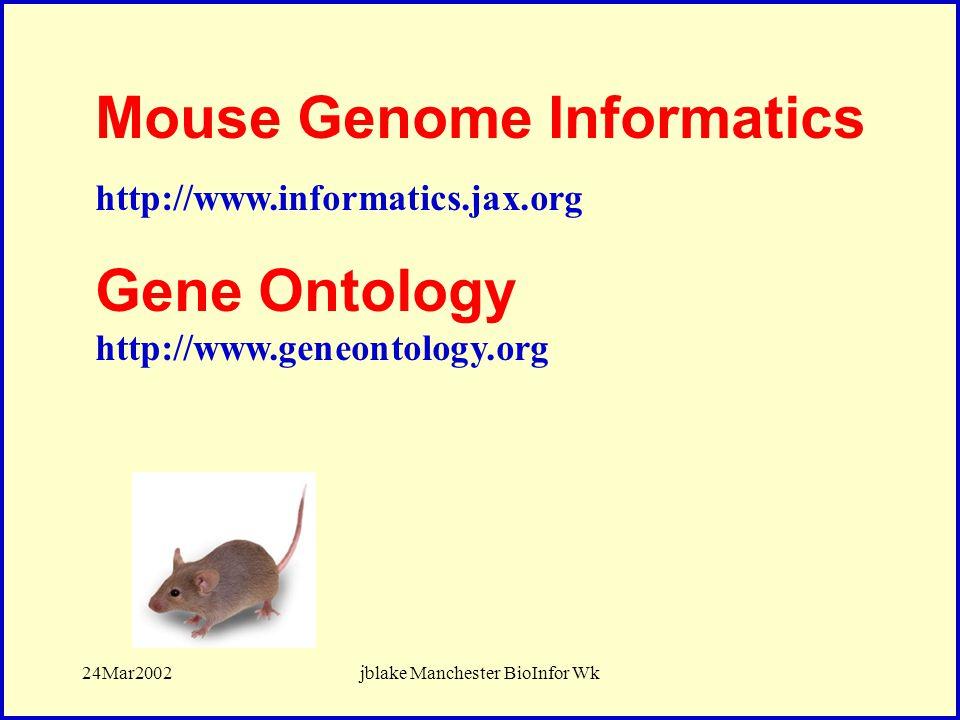24Mar2002jblake Manchester BioInfor Wk Mouse Genome Informatics http://www.informatics.jax.org Gene Ontology http://www.geneontology.org