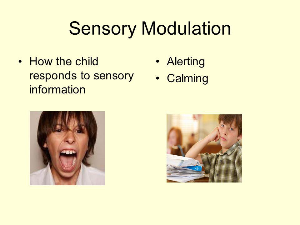 Sensory Modulation How the child responds to sensory information Alerting Calming