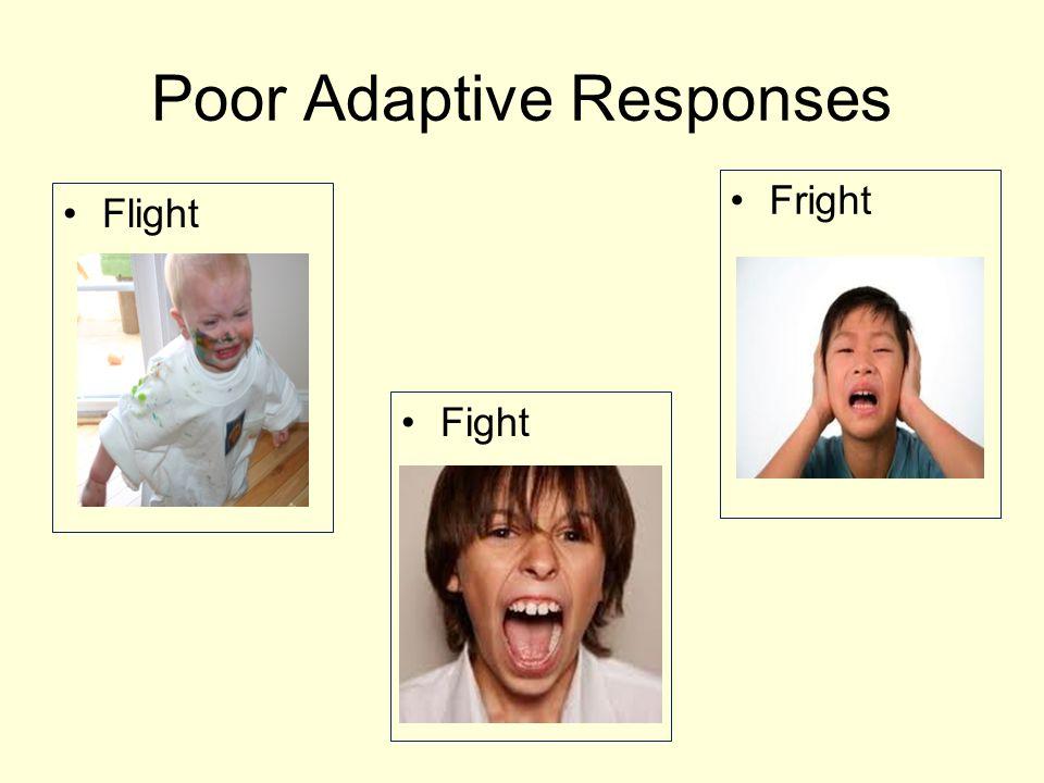Poor Adaptive Responses Flight Fight Fright