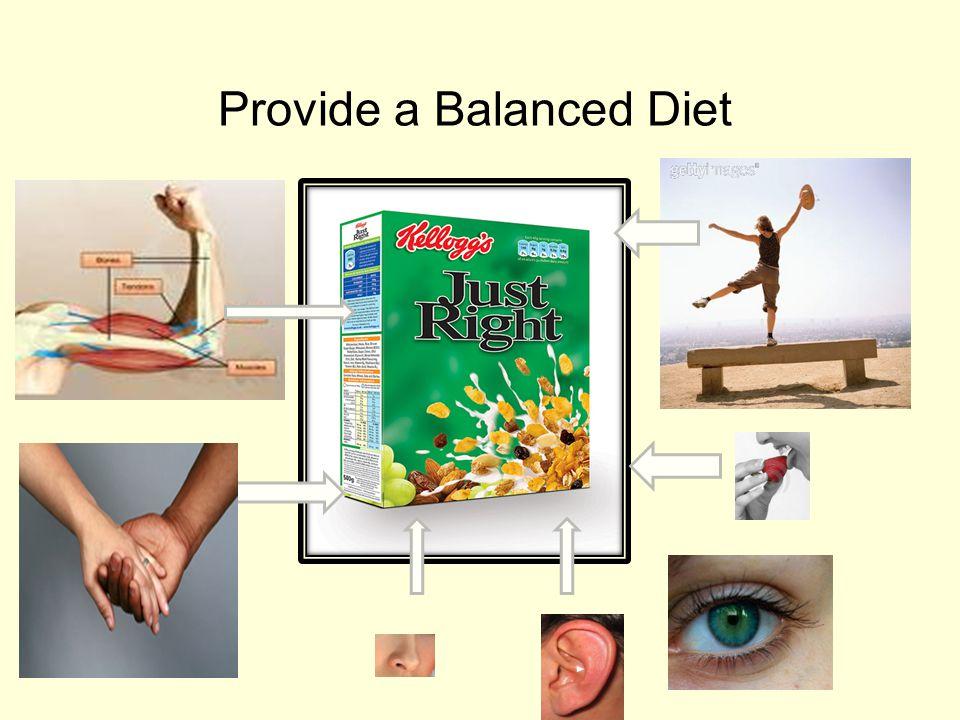 Provide a Balanced Diet