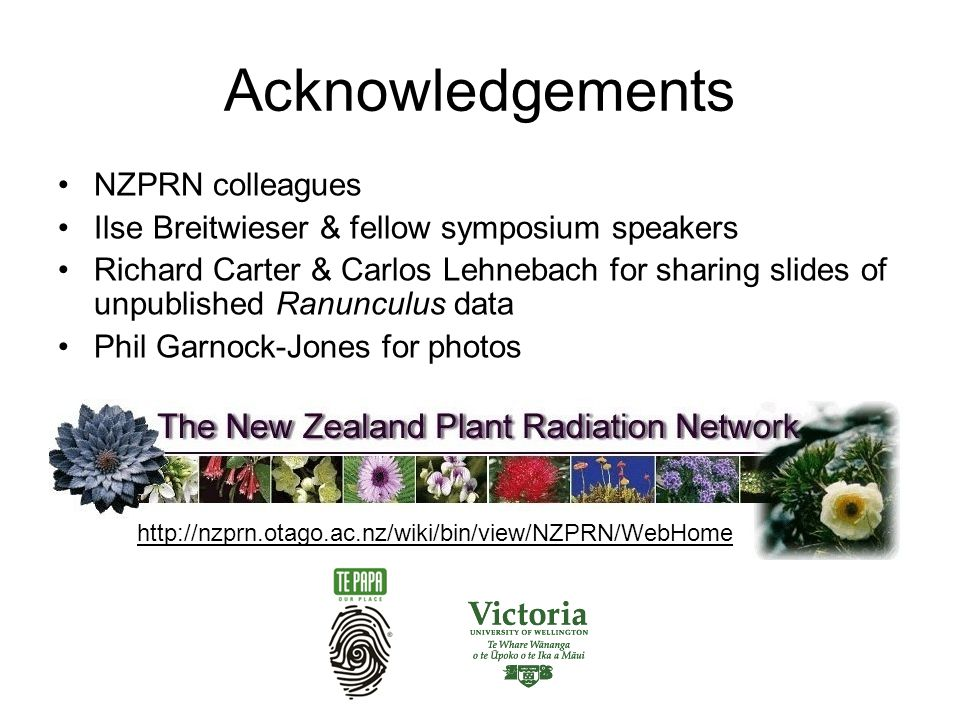 Acknowledgements NZPRN colleagues Ilse Breitwieser & fellow symposium speakers Richard Carter & Carlos Lehnebach for sharing slides of unpublished Ranunculus data Phil Garnock-Jones for photos http://nzprn.otago.ac.nz/wiki/bin/view/NZPRN/WebHome