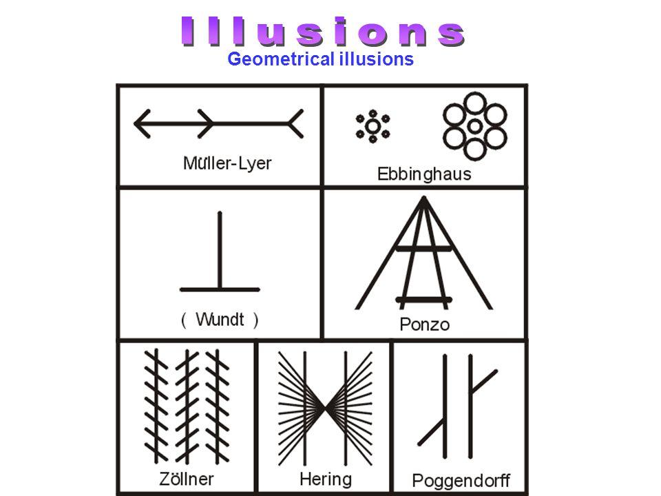 Geometrical illusions