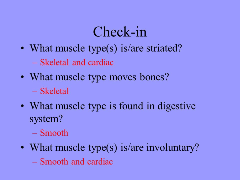 Check-in What muscle type(s) is/are striated.–Skeletal and cardiac What muscle type moves bones.