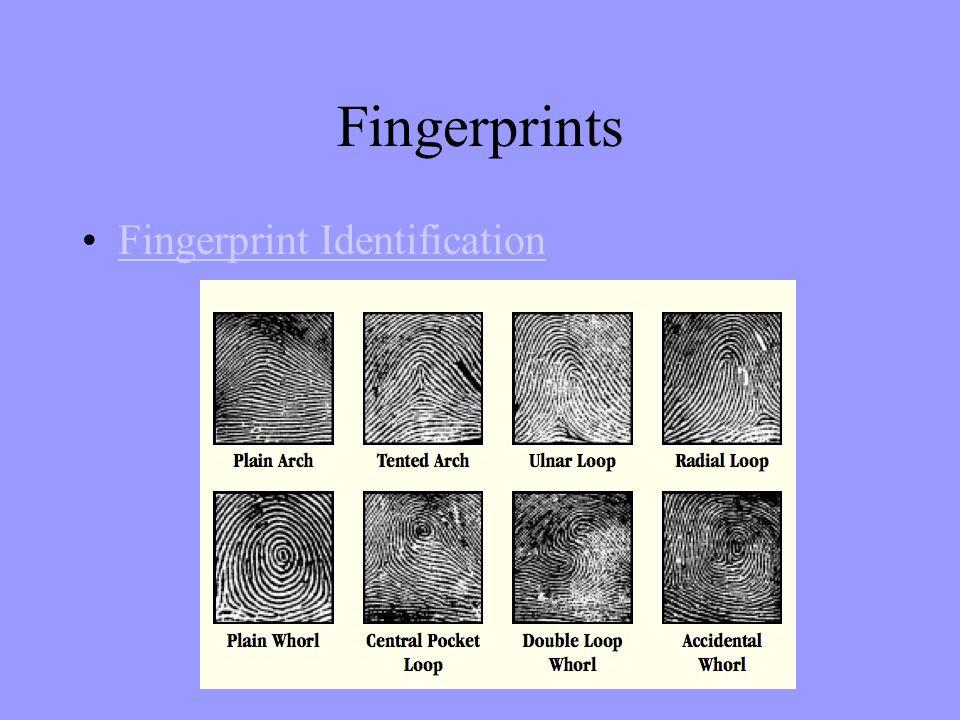 Fingerprints Fingerprint Identification