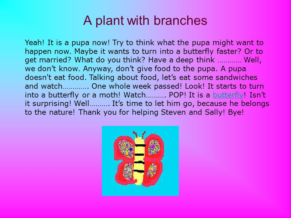 A plant with branches Yeah. It is a pupa now. Try to think what the pupa might want to happen now.