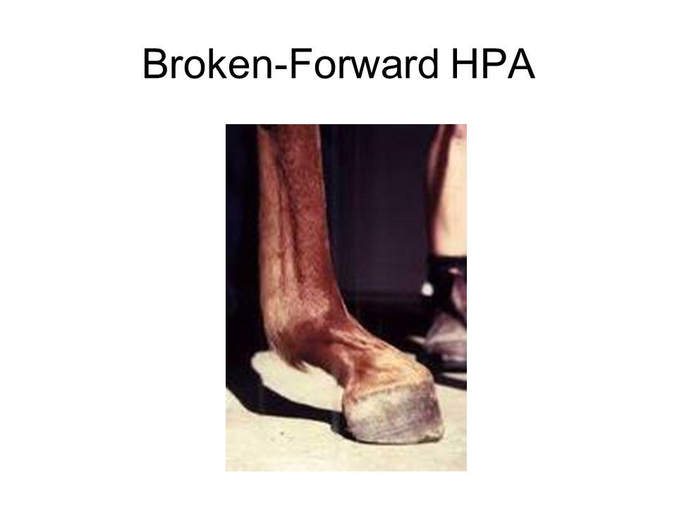 Broken-Forward HPA