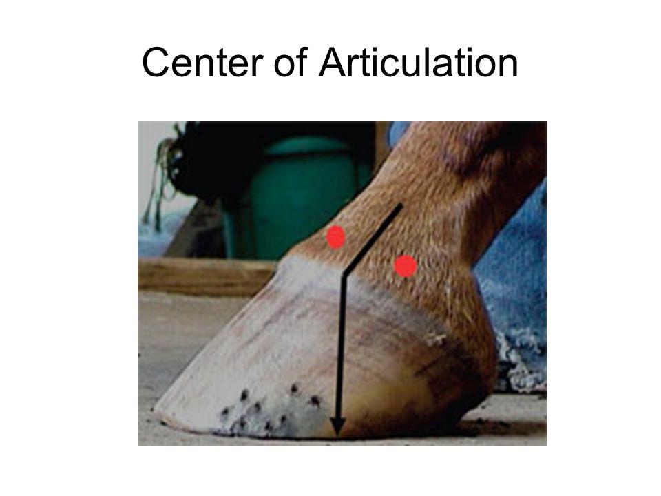 Center of Articulation