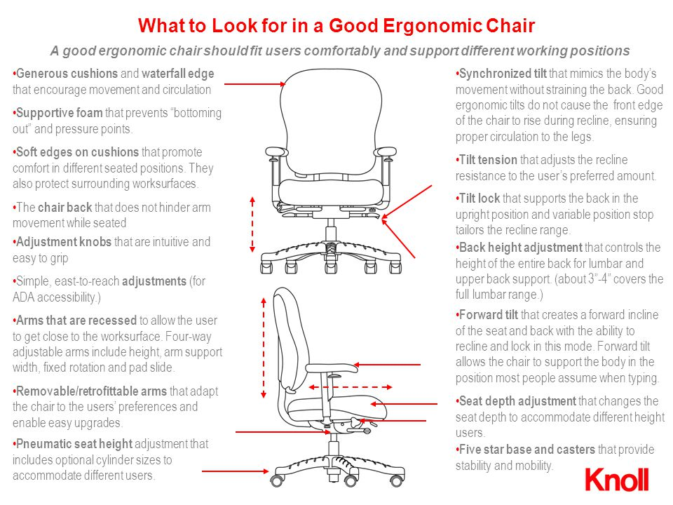 Generous cushions and waterfall edge that encourage movement and circulation What to Look for in a Good Ergonomic Chair A good ergonomic chair should