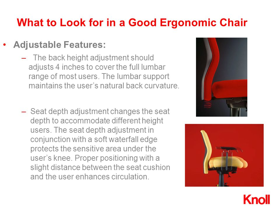 What to Look for in a Good Ergonomic Chair Adjustable Features: –Seat depth adjustment changes the seat depth to accommodate different height users. T