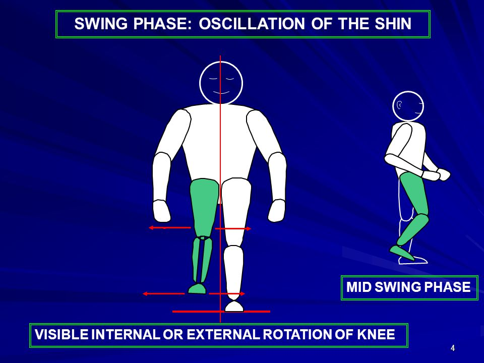 4 SWING PHASE: OSCILLATION OF THE SHIN VISIBLE INTERNAL OR EXTERNAL ROTATION OF KNEE MID SWING PHASE