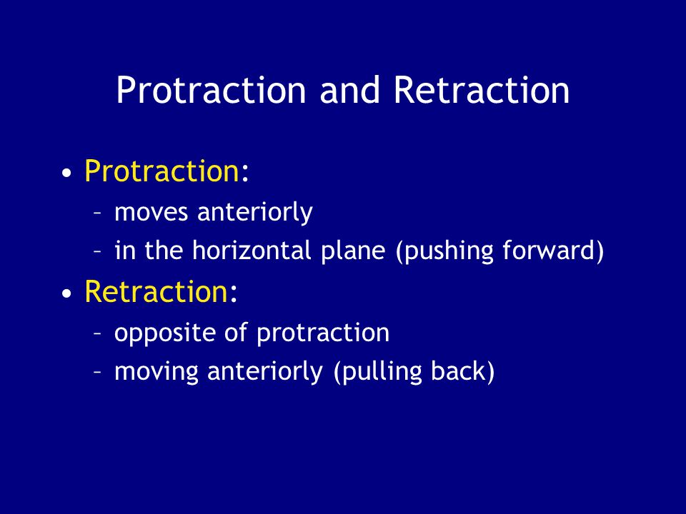 Protraction and Retraction Protraction: –moves anteriorly –in the horizontal plane (pushing forward) Retraction: –opposite of protraction –moving ante