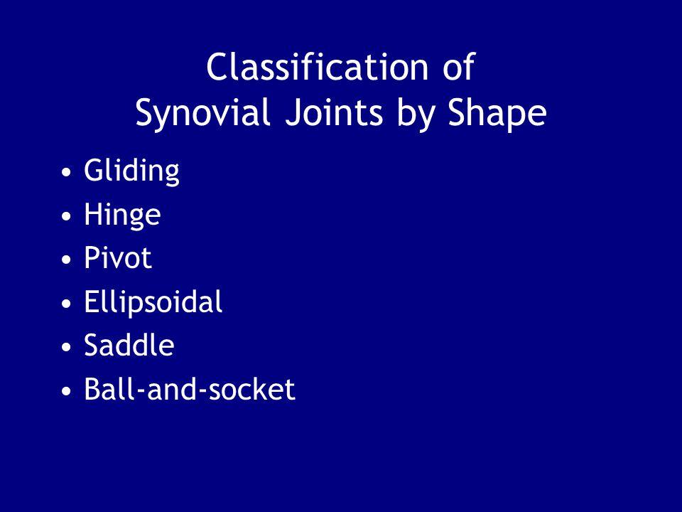 Classification of Synovial Joints by Shape Gliding Hinge Pivot Ellipsoidal Saddle Ball-and-socket