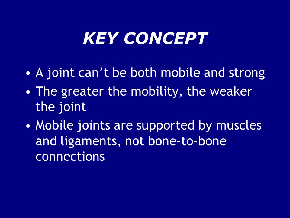 KEY CONCEPT A joint can't be both mobile and strong The greater the mobility, the weaker the joint Mobile joints are supported by muscles and ligament