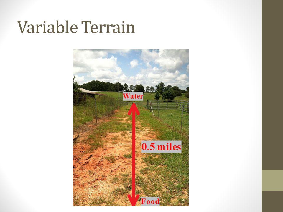 Variable Terrain