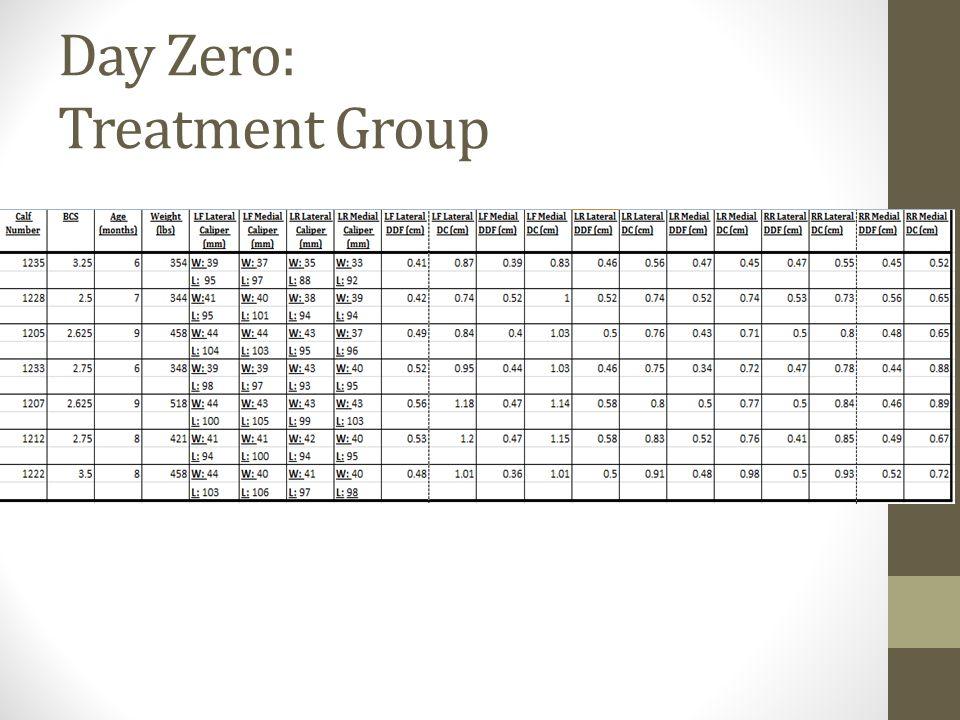 Day Zero: Treatment Group