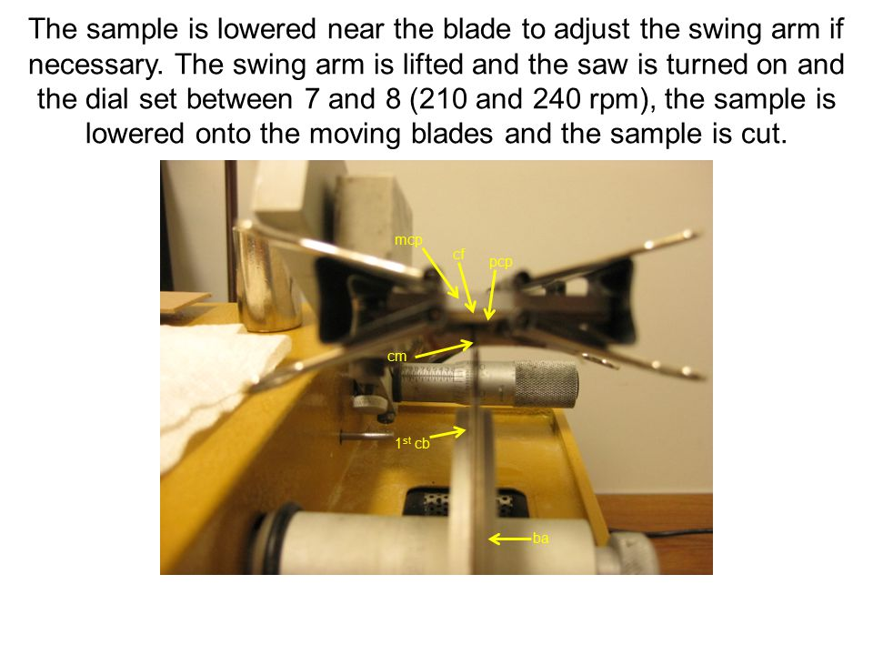 The sample is lowered near the blade to adjust the swing arm if necessary.