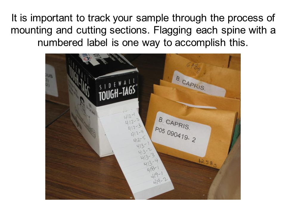 It is important to track your sample through the process of mounting and cutting sections.