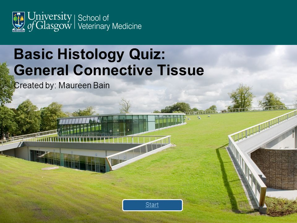 Basic Histology Quiz: General Connective Tissue Created by: Maureen Bain Start