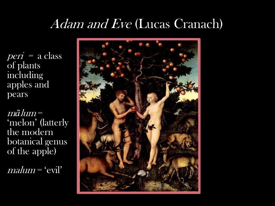 Adam and Eve (Lucas Cranach) peri = a class of plants including apples and pears m ā lum = 'melon' (latterly the modern botanical genus of the apple) malum = 'evil'