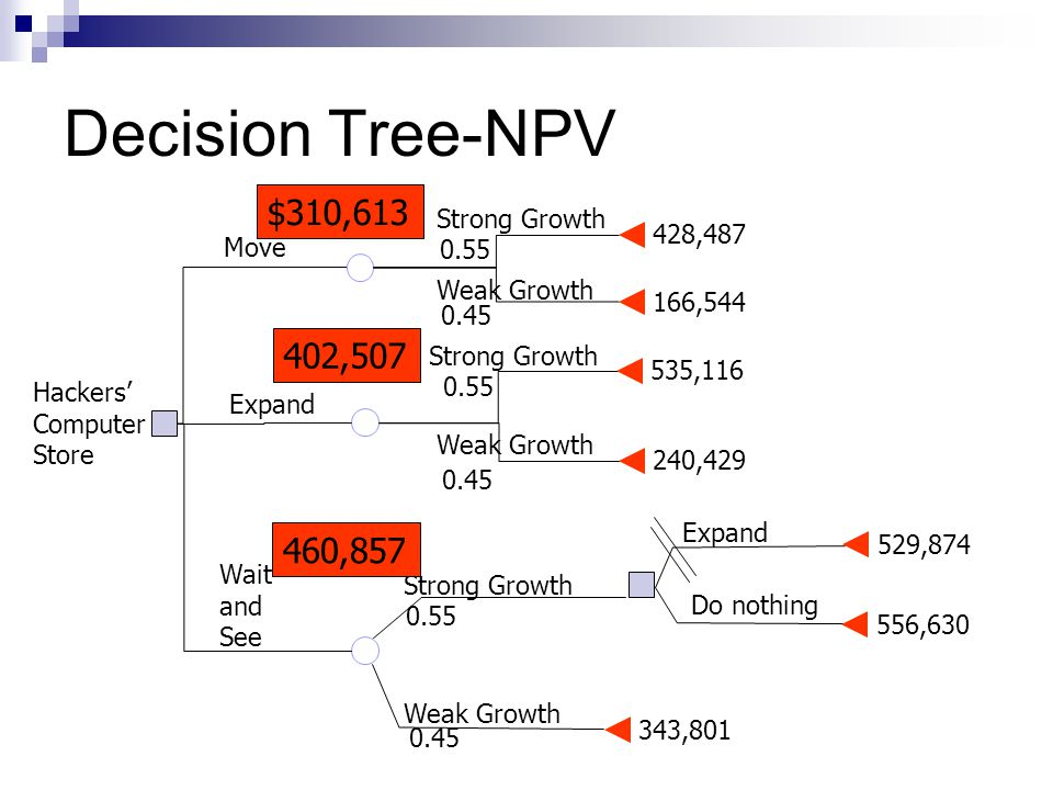 Decision Tree-NPV 428,487 166,544 535,116 240,429 Weak Growth Strong Growth Move Expand 343,801 529,874 556,630 0.45 0.55 0.45 Wait and See Weak Growth Strong Growth 0.55 0.45 Expand Do nothing Hackers' Computer Store $310,613 402,507 460,857