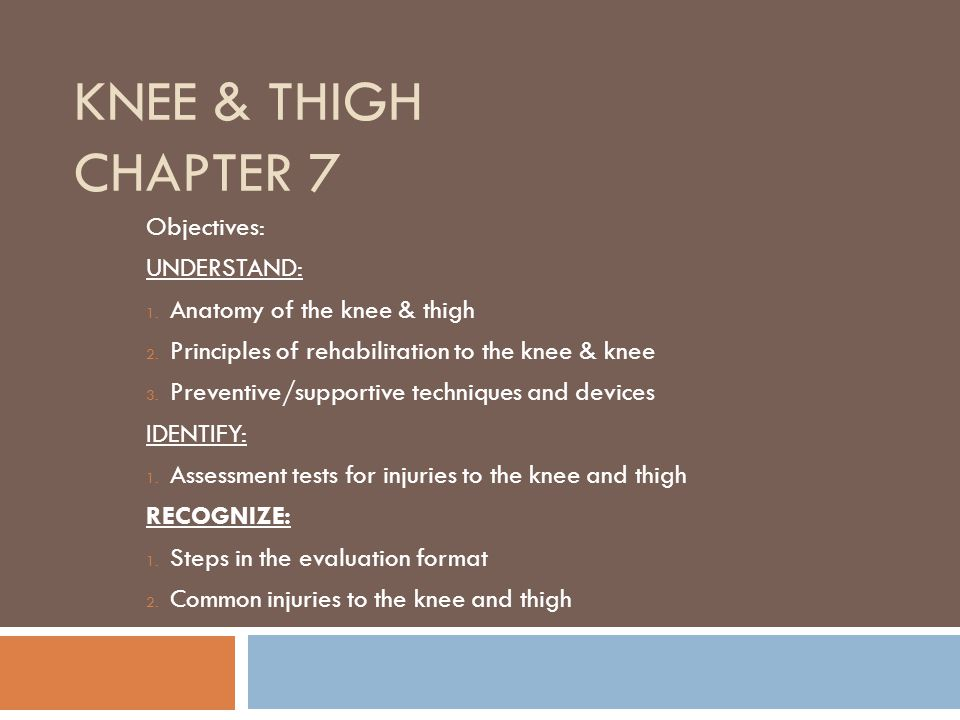 KNEE & THIGH CHAPTER 7 Objectives: UNDERSTAND: 1.Anatomy of the knee & thigh 2.