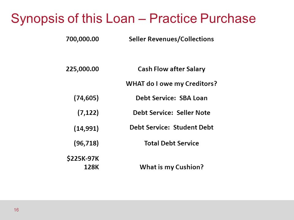Synopsis of this Loan – Practice Purchase 16