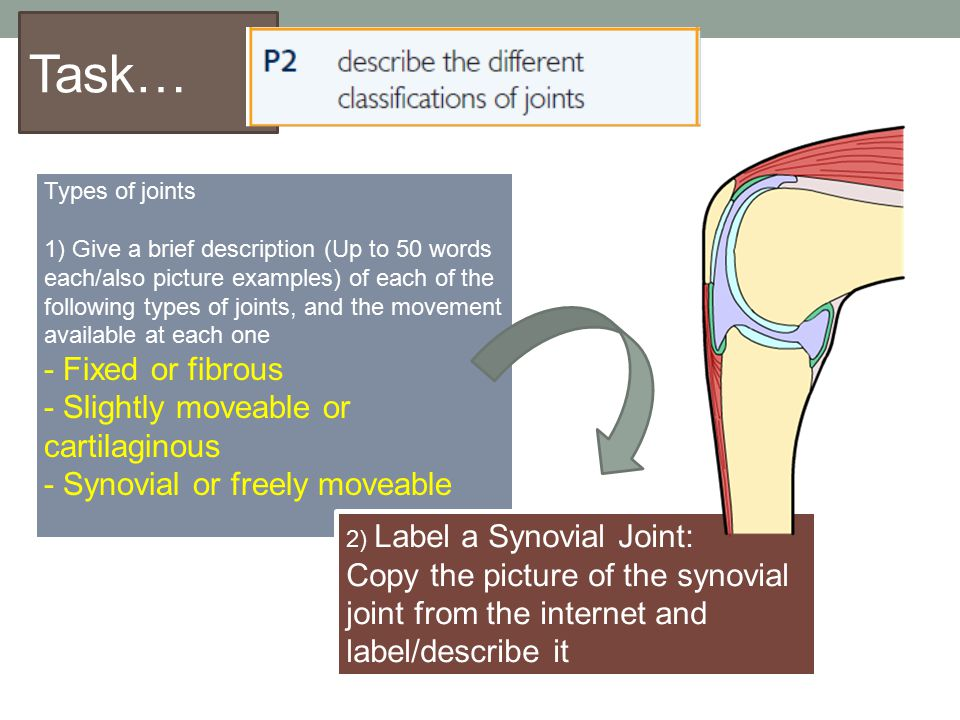 Task… Types of joints 1) Give a brief description (Up to 50 words each/also picture examples) of each of the following types of joints, and the moveme