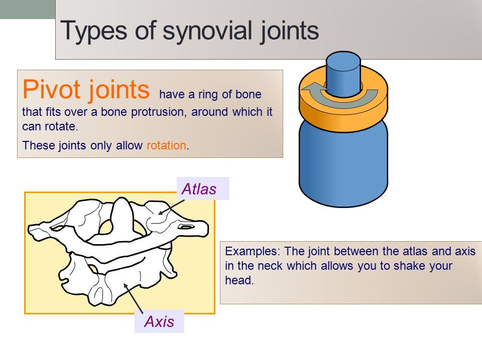 Types of synovial joints Pivot joints have a ring of bone that fits over a bone protrusion, around which it can rotate. These joints only allow rotati
