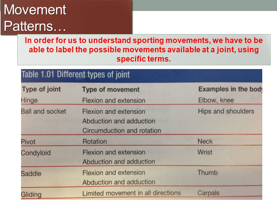 Movement Patterns… In order for us to understand sporting movements, we have to be able to label the possible movements available at a joint, using sp