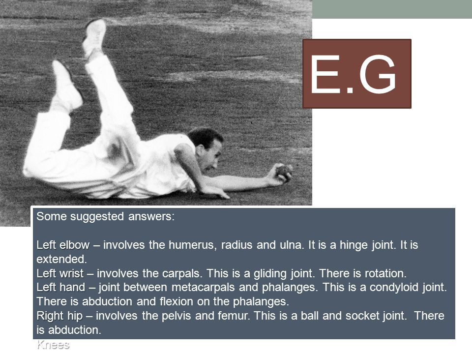 Some suggested answers: Left elbow Left elbow – involves the humerus, radius and ulna. It is a hinge joint. It is extended. Left wrist Left wrist – in