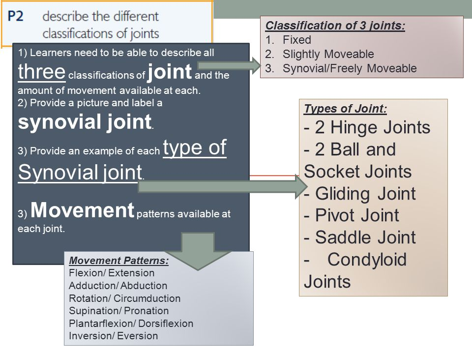 1) Learners need to be able to describe all three classifications of joint and the amount of movement available at each. 2) Provide a picture and labe