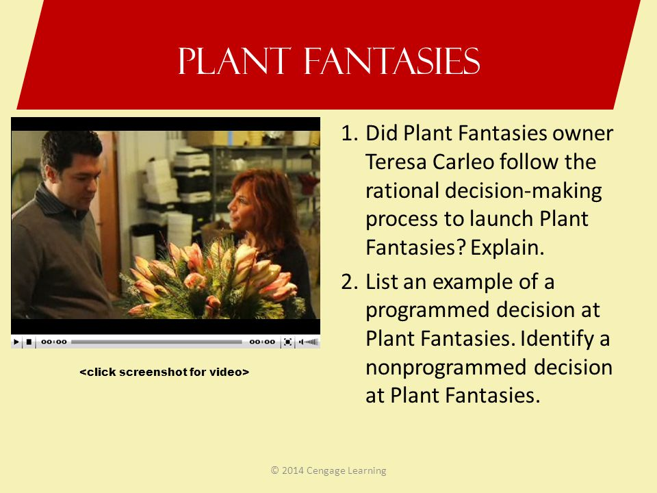Plant Fantasies 1.Did Plant Fantasies owner Teresa Carleo follow the rational decision-making process to launch Plant Fantasies? Explain. 2.List an ex
