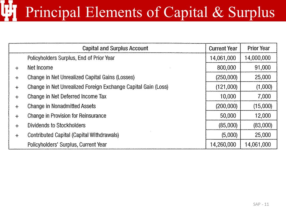 Principal Elements of Capital & Surplus SAP - 11