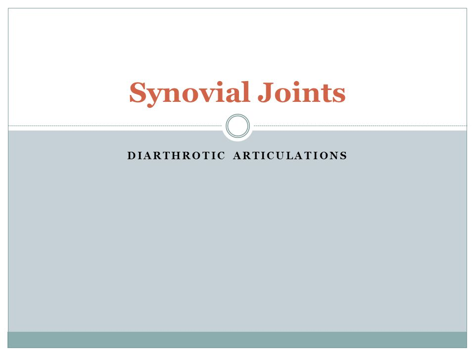 What are synovial joints.