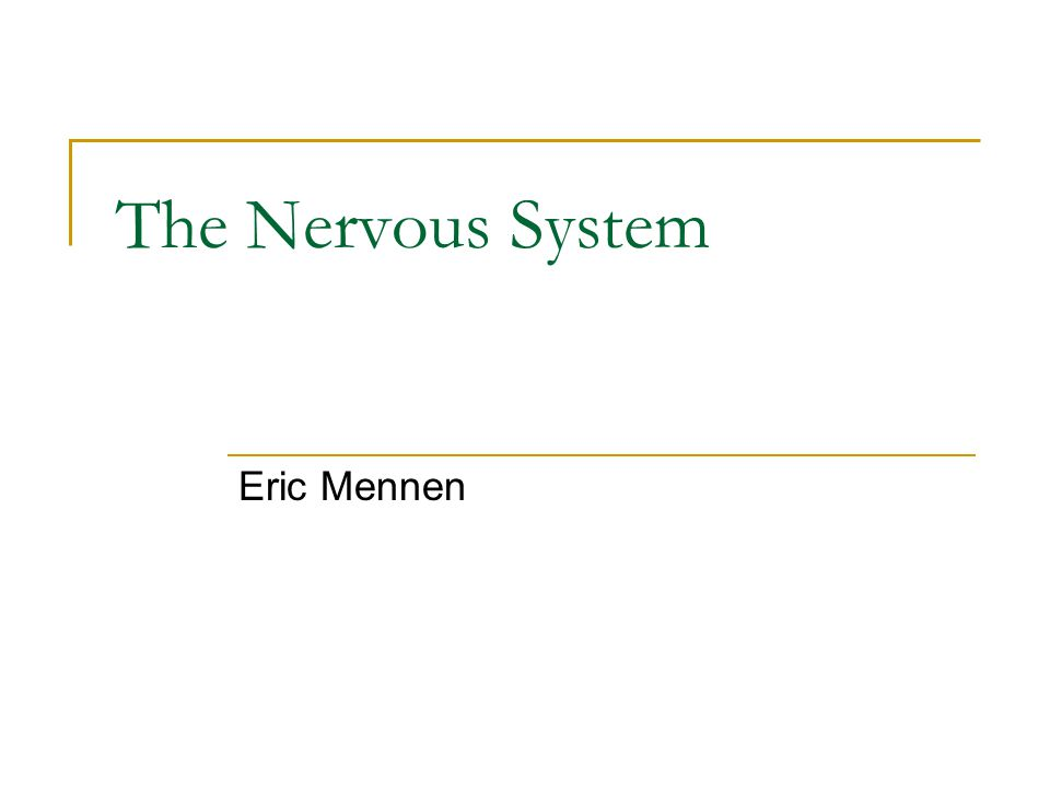 The Nervous System Eric Mennen