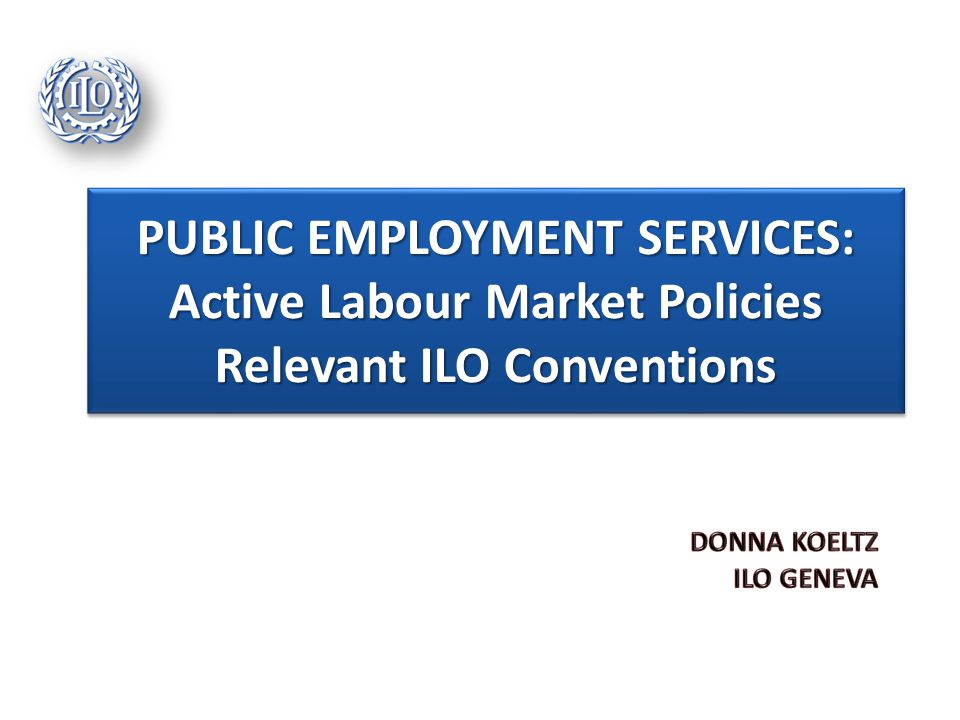 Public Employment Services are the government institutions which plan and execute many of the labour market polices governments use to help workers enter the labour market, to facilitate labour market adjustments, and to cushion the impact of economic transitions.