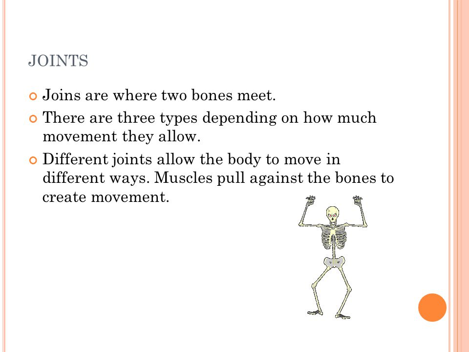 JOINTS Joins are where two bones meet. There are three types depending on how much movement they allow. Different joints allow the body to move in dif