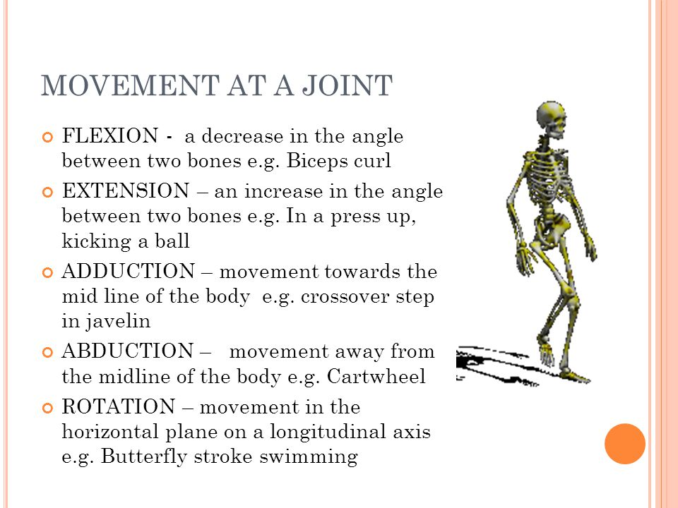 MOVEMENT AT A JOINT FLEXION - a decrease in the angle between two bones e.g. Biceps curl EXTENSION – an increase in the angle between two bones e.g. I