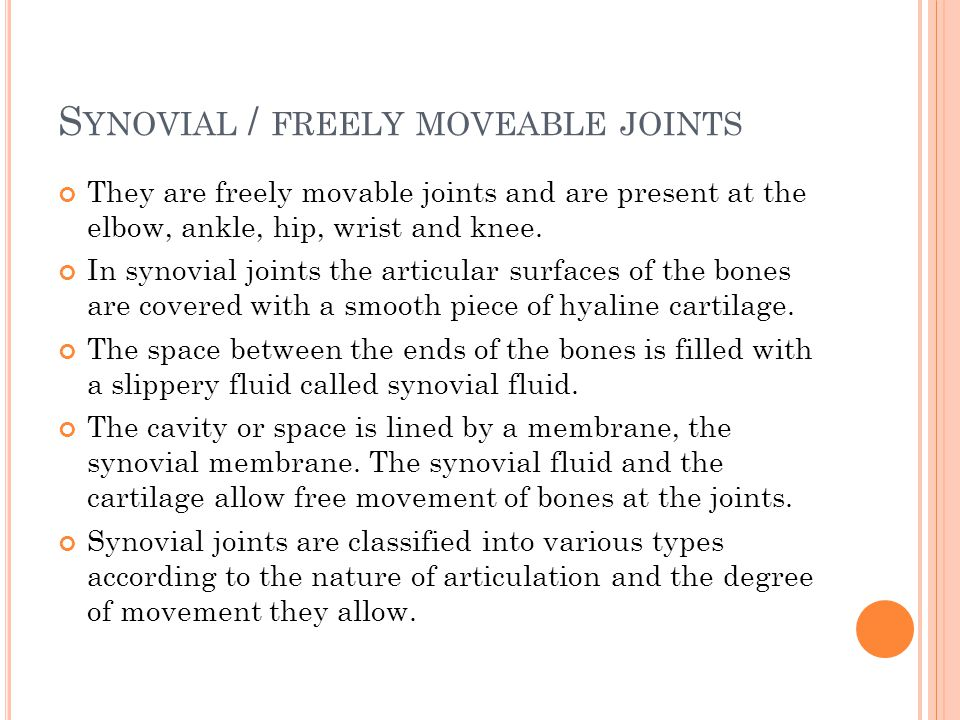 S YNOVIAL / FREELY MOVEABLE JOINTS They are freely movable joints and are present at the elbow, ankle, hip, wrist and knee. In synovial joints the art